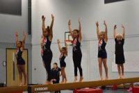 Thurrock Gymnastics Class